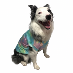 Regata para Pet - Tie Dye Collection