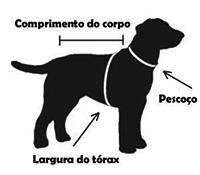 Como Medir Seu Cachorro